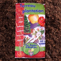 TERREAU DE PLANTATION 60L